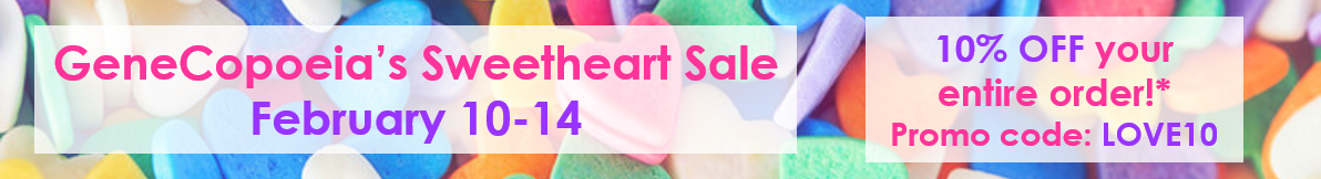valentines sale banner - product page